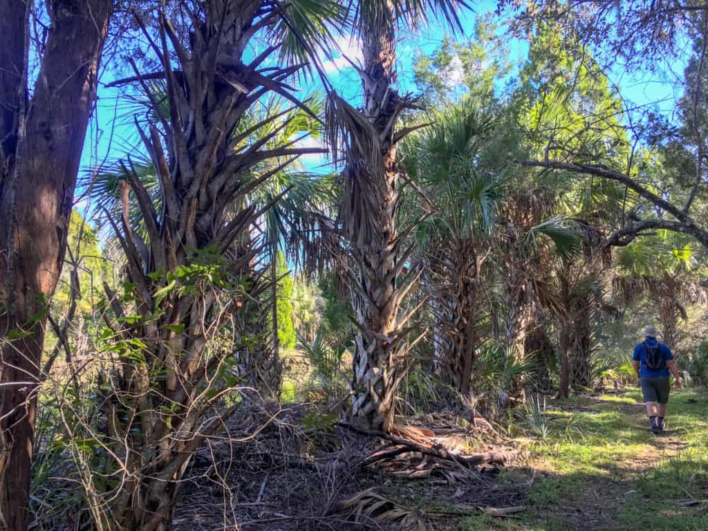 Crystal River FL Trail