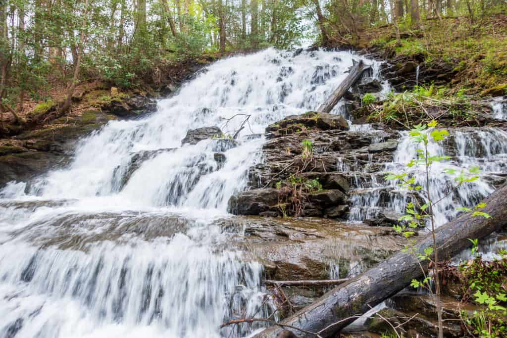 Vogel State Park Hiking Waterfall