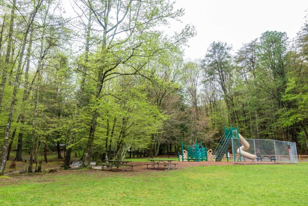 Vogel State Park Playground