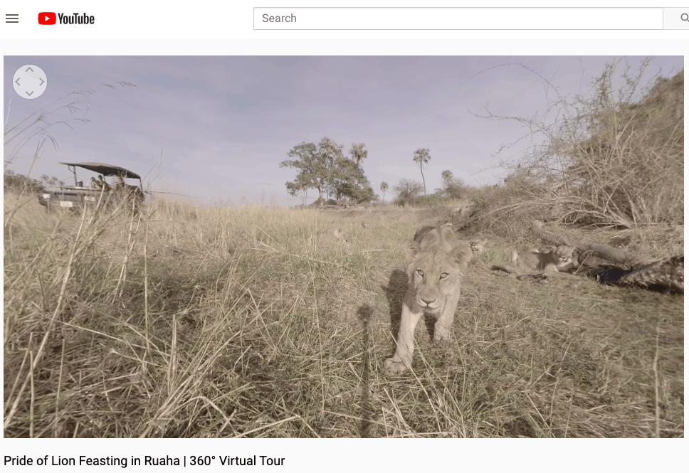 virtual travel safari