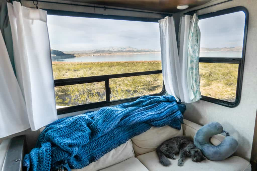 Cat Relaxing in the RV