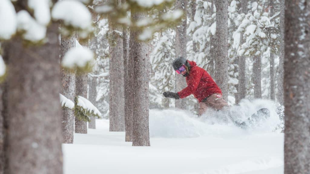 Southern Idaho skier