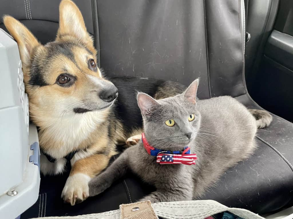 Marty and Dakota, all grown up and traveling together